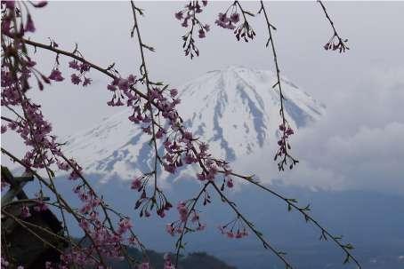 Widok na Fudżi