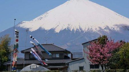 Japonia - ciekawostki