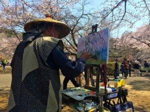 Wiśnie kwitnące w parku Sakura