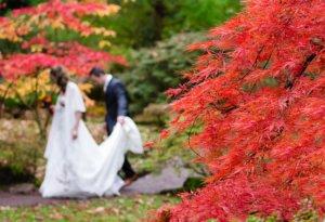 Miesiąc miodowy w Japonii - niezapomniana przygoda