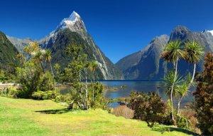 Podróż do Nowej Zelandii - Milford