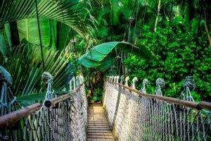 Most linowy w Tajlandii