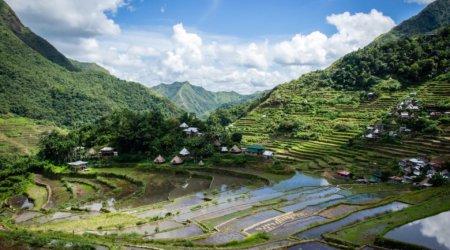 Tarasy ryżowe na Filipinach