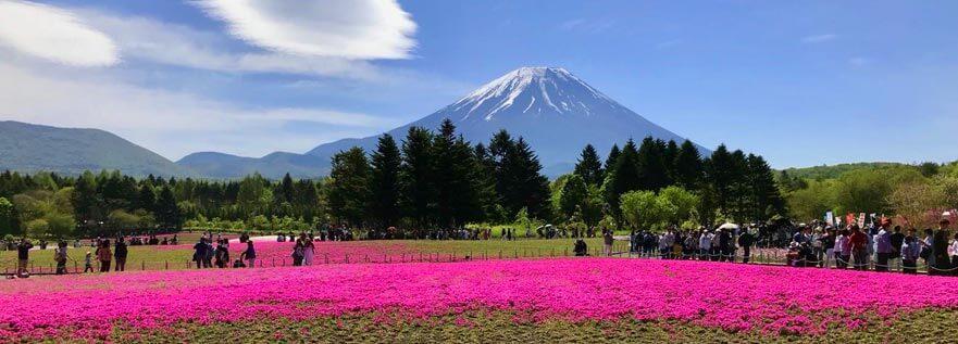Widok na Fuji