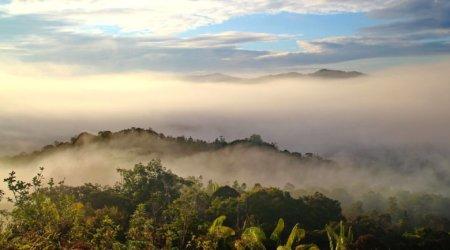 Widok na góry w Malezji