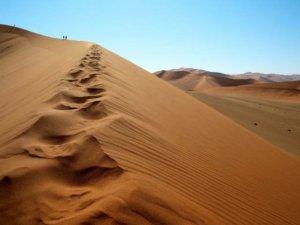 Wyprawa do Namibii - pustynia